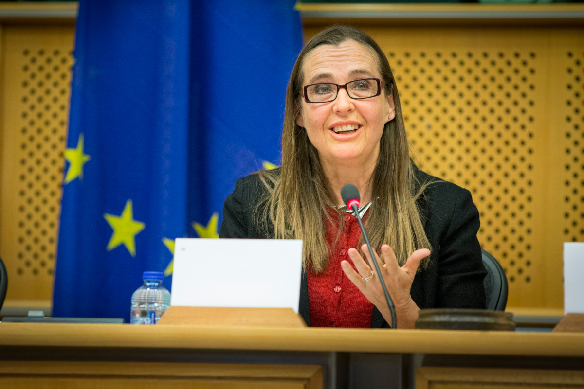 Bodil Valero, Member of the European Parliament for the Greens/ALE Group, proposed amendment 234.