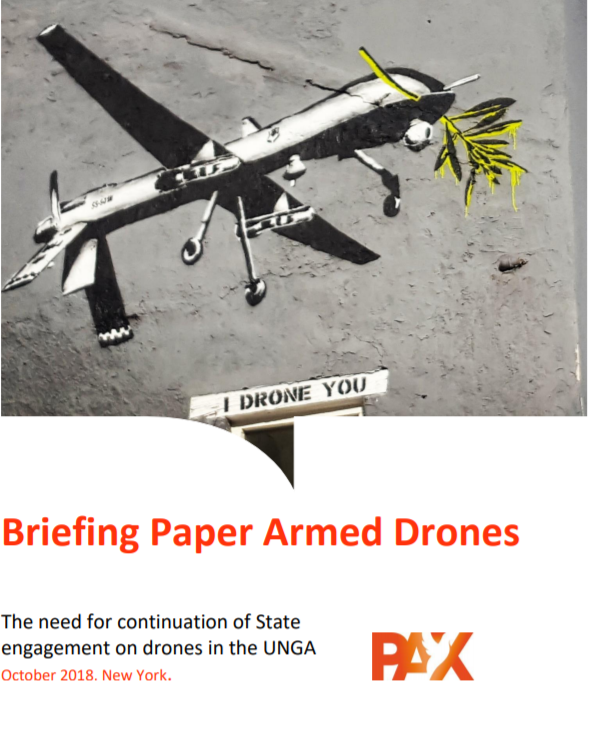 Briefing Paper Armed Drones